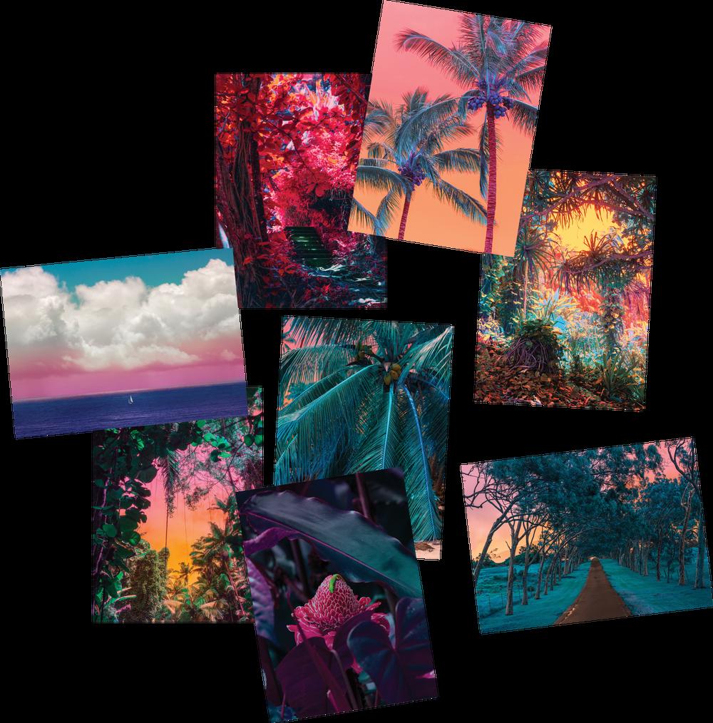 Hawaii Postcards Set